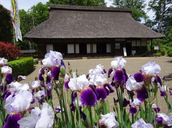 Kawagoe Michiryokuchi Old House Garden