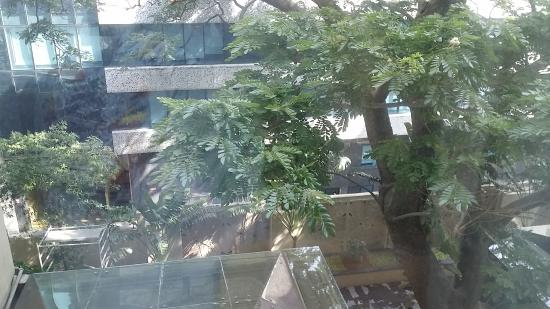 泰芒路酒店張圖片