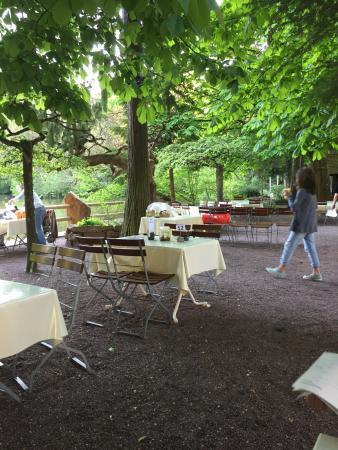 Dammenmuhle Landhotel : Hôtel calme dans un cadre naturel.Détente assuré avec une bonne bière à la terrasse en bord de l
