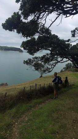 Waiheke-øya, New Zealand: photo0.jpg
