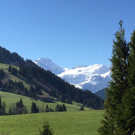Schonried, Schweiz: Vues depuis la chambre
