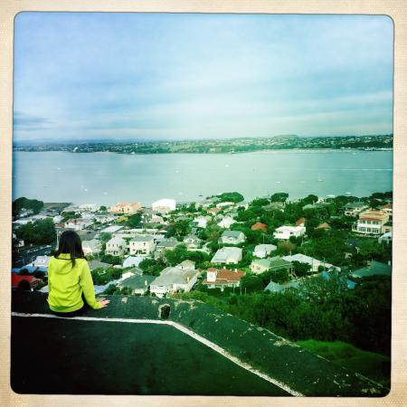 Devonport, Neuseeland: Nice view on whole Auckland from there.