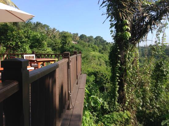 Kayumanis Ubud Private Villa & Spa: The view from the deck at the dining corner