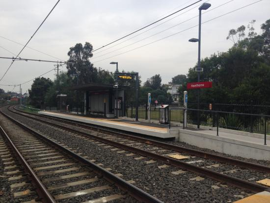 Leichhardt, Австралия: Hawthorn Light Rail Station - May 2015