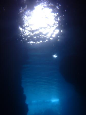 Puzumari Diver's Club