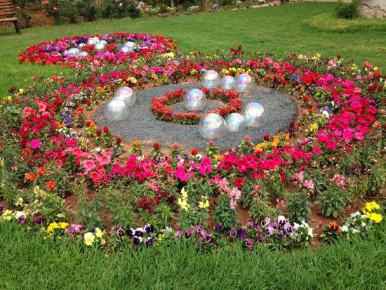 Jardin Anima