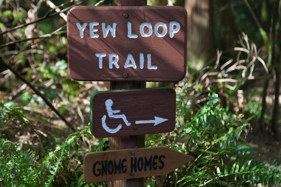 Morrell Sanctuary: The Yew Loop Trail is wheelchair accessible.