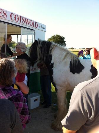 Minchinhampton Common: All welcome at ice cream van