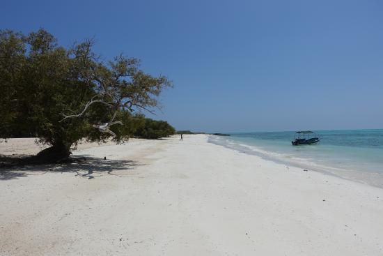 Djibouti: Moucha Island
