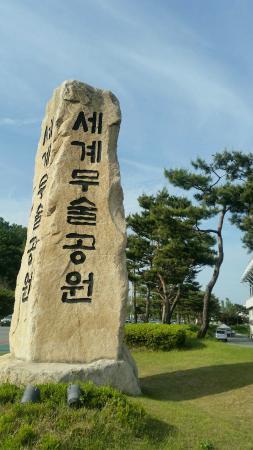 충주 세계 무술공원 사진