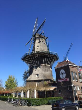 De Gooyer Windmill Photo