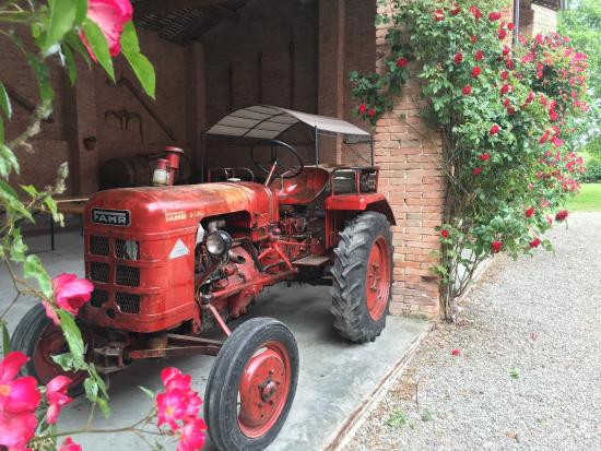 Agriturismo San Giuseppe - Bed and Breakfast: photo1.jpg