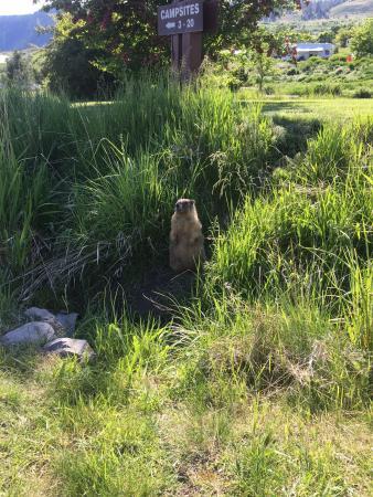 Kekuli Bay Provincial Park: photo3.jpg