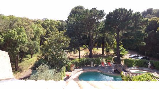 Hotel Les Palmiers: Vue de la chambre, l'oasis de verdure d'espèces méditerranéennes et le fort de Brégançon au fond