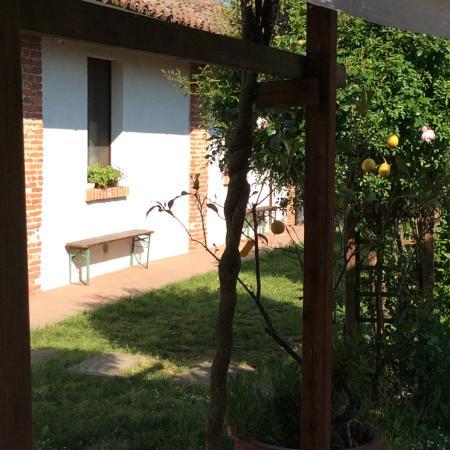 Cassinetta di Lugagnano Foto