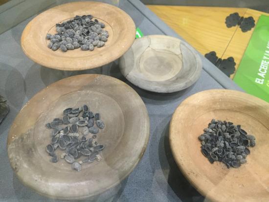 Almedinilla, Spagna: Cerámica íbera en el museo local. Huesos de aceitunas de hace más de 2000 años.