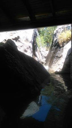 Centro Ecologico de Sonora: DSC_0216_large.jpg