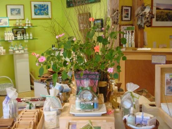 Quechee, VT: our store