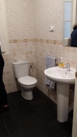 Lenin Hostel: Ensuite toilet.