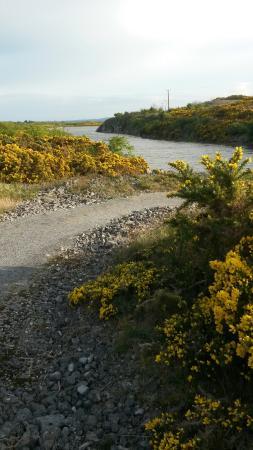 Askeaton, Irlandia: View from trail.