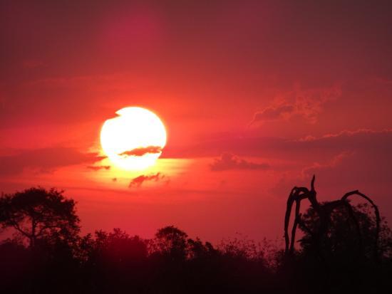 Hectorspruit, Sudáfrica: couchés et levés de soleil magnifiques