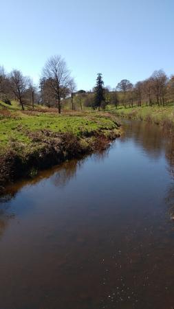 Hulne Park: River Aln