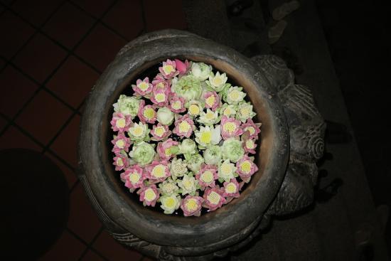 جولدن مانجو إن: Lotusblüten im Empfangsbereich