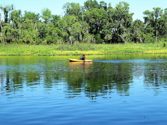 Lower Wekiva River State Preserve