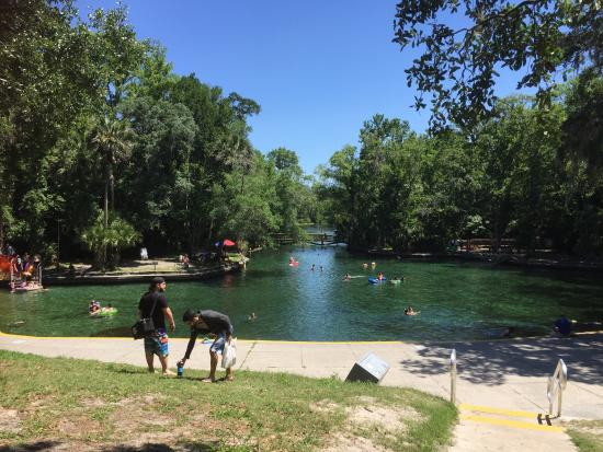 Wekiwa Springs State Park: photo0.jpg