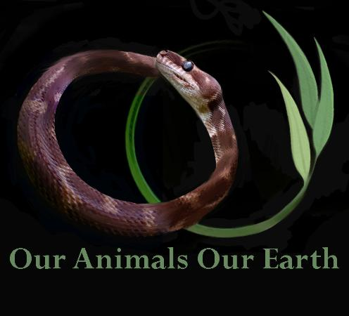 Our Animals Our Earth