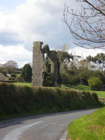 Freshford, Irlandia: Castle ruins next door