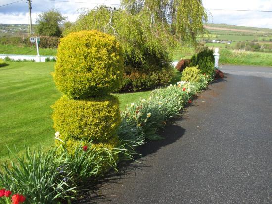 Freshford, Ιρλανδία: The front yard