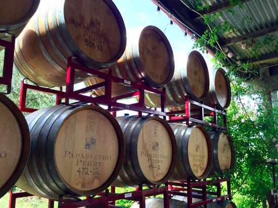 Papapietro Perry Winery: Barrels delineating the patio