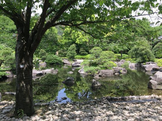 Hayama-machi, Japan: 庭園の池