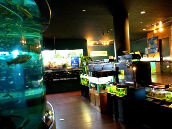 Fuji Yusui no Sato Aquarium: photo1.jpg
