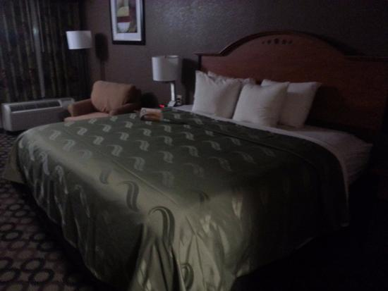 Quality Inn & Suites Columbus: View of Room 209 #1