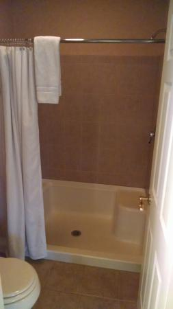 Skaneateles Suites Boutique Hotel: Large stand up shower stall