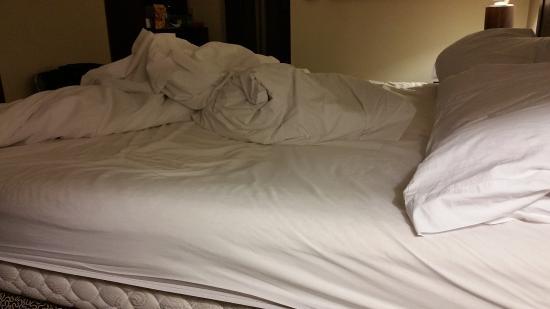 هيلتون جاردن إن جرانبري: wore out mattress!