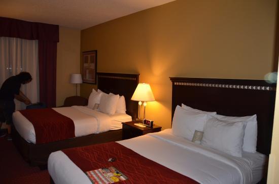 Comfort Inn & Suites Maingate South Photo