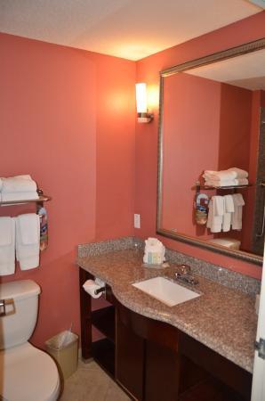 Foto de Comfort Inn & Suites Maingate South