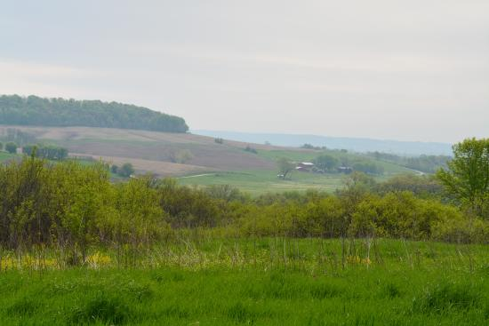 The Inn at Irish Hollow: Just one of many unbelievable vistas on our walkabout