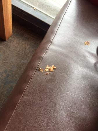 Caulfield, Australia: Food on the seats and floors attracted the flies.
