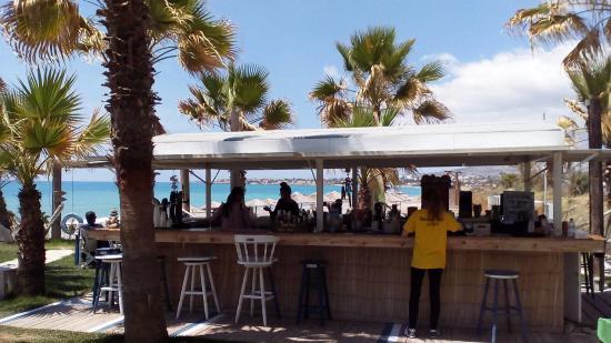 Paphos District, Siprus: Барная стойка