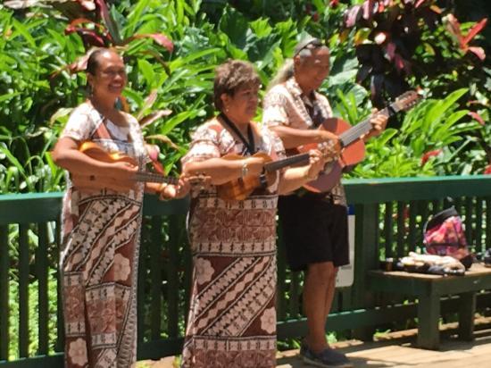 Kilauea, Hawái: Hawaiian Wedding Song at Fern Grotto
