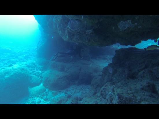 Flic En Flac: superbe fond marin