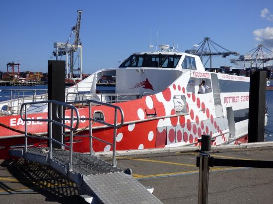 how to travel from perth to rottnest island