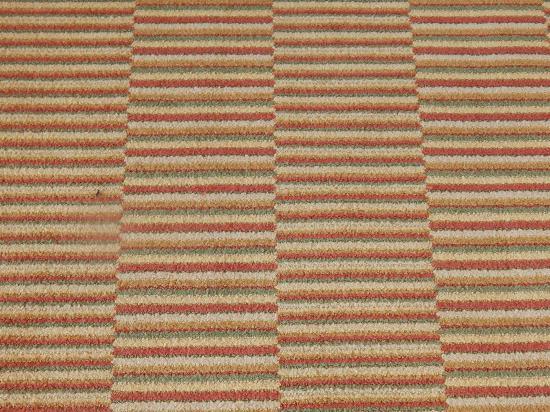 Francisco Grande Hotel & Golf Resort: dizzy carpet
