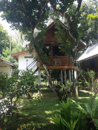Khlong Sok, Tailandia: photo0.jpg