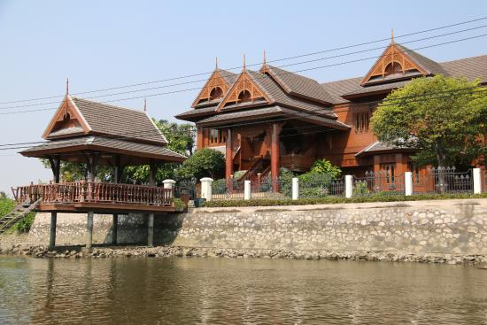 Buffalo Tours - Thailand