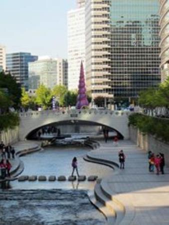 picture of staz hotel myeongdong 1 rh tripadvisor co za
